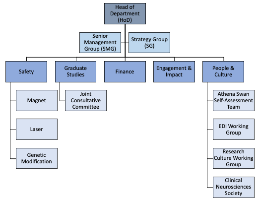 Graphic showing committee structure. If you require an accessible version, contact communications@ndcn.ox.ac.uk
